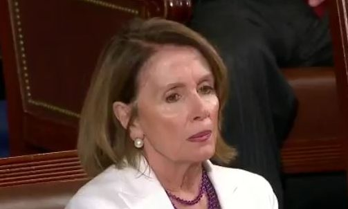 Trump Pelosi at Congress Speech